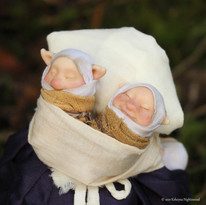 Brownie Midwife babies