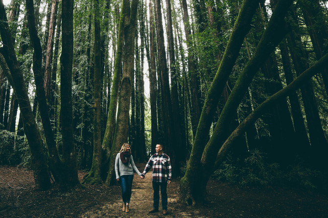 Trevor + Brittany (Mill Valley engagement)