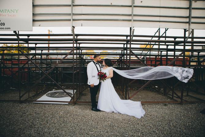 Miguel + Liz ( Tracy, CA)
