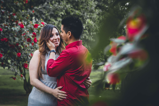 Monica + Ray (Sacramento Engagement)