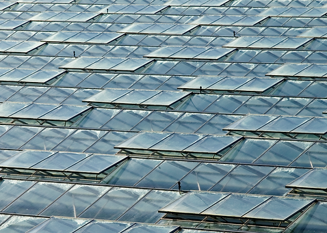 Roof Glass.PNG
