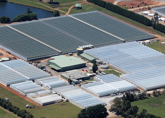 Arial Shot with new glasshouses.PNG
