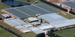 Arial Shot with new glasshouses