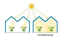 Diffused glass.jpeg