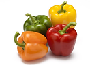 Capsicum colours.png