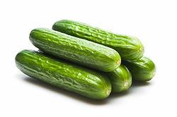 Lebanese Cucumbers