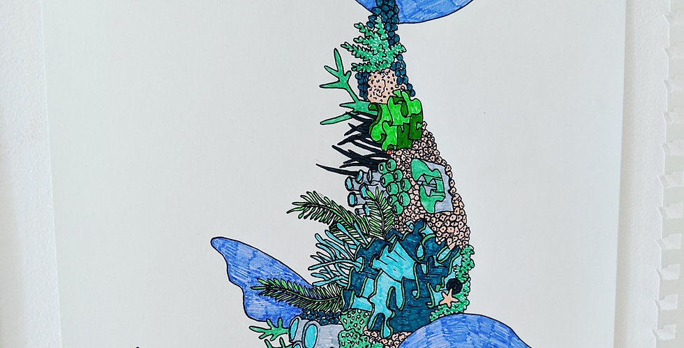 Coral Whale Poster