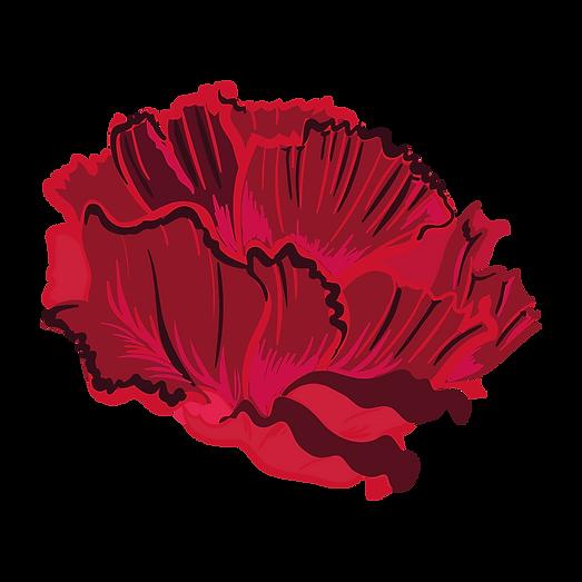 Picto3-fleur.png