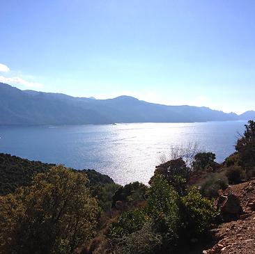 Entre maquis et Méditerranée