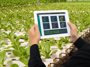 A Smarter Green Thumb Powered by Microchip