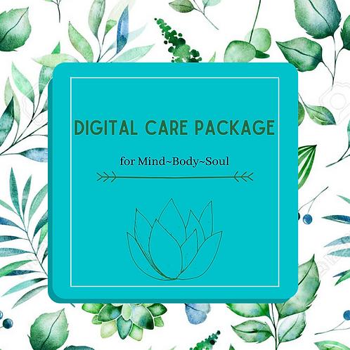 """""""Digital"""" Care Package"""