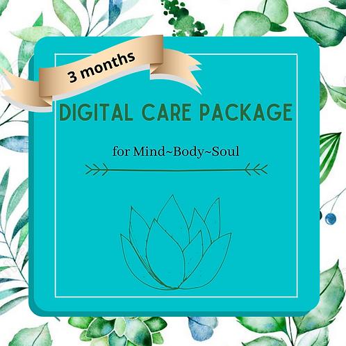"""3-pack of """"Digital"""" Care Package"""