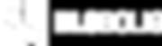 DLS-Bolig-redesign-logo-hvit-versjon-jan