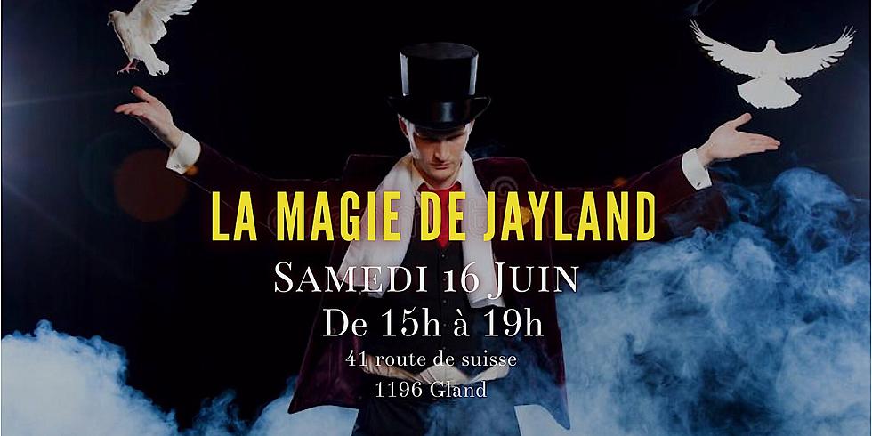 La Magie de Jayland !