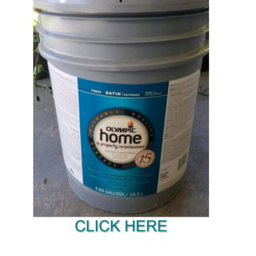 Olympic Home Interior Latex (5 gallon)