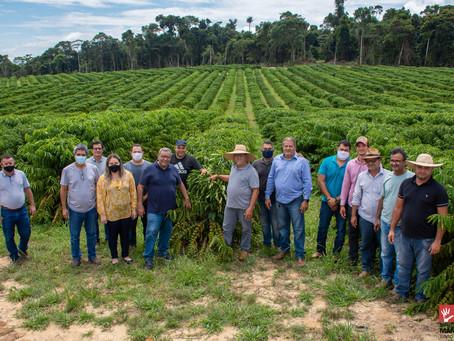 Mâncio Lima: o bom exemplo de agricultura familiar diversificada e promissora