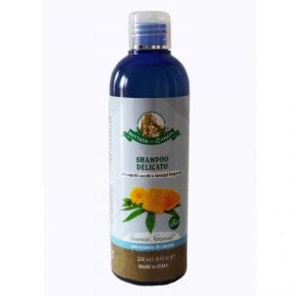Shampoo Oil of Hemp and Calendula and Honey