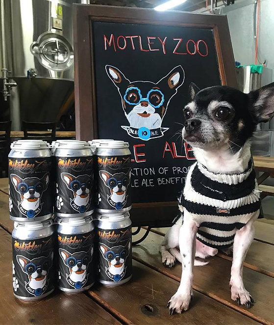 Motley Zoo Pale Ale from Postdoc Brewing