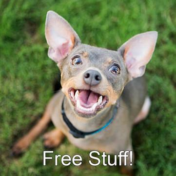 free stuff icon.jpg