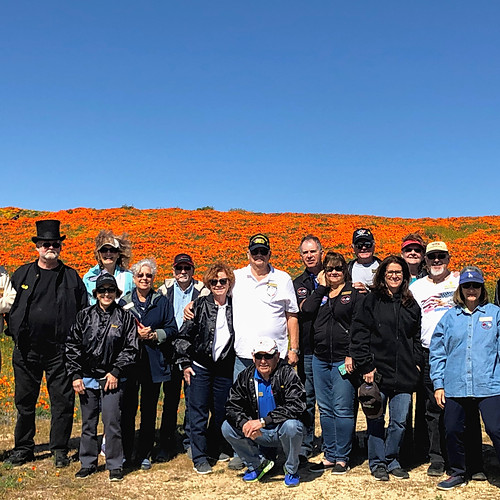 2019 California State Poppy Reserve