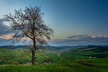 Foto_Landscape_49