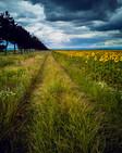 Foto_Landscape_72