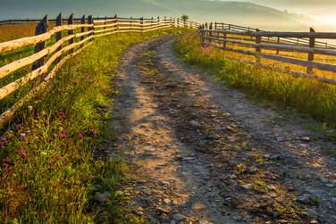 Foto_Landscape_60