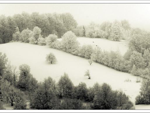 Iarna 2018. Retrospectivă foto.