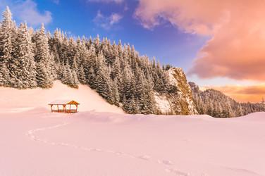 Foto_Landscape_31