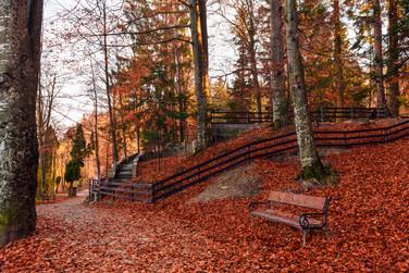 Foto_Landscape_68