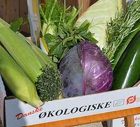 groentsager.jpg