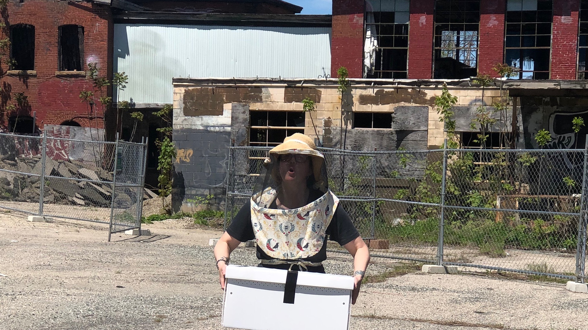 The Farm's honeybees in partnership with Little Rhody Beekeeping