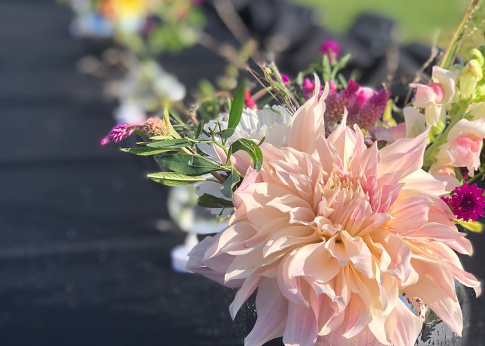 Dahlias are for rent in season