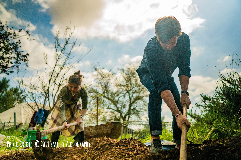 Step 2: Garden Design and Set-Up