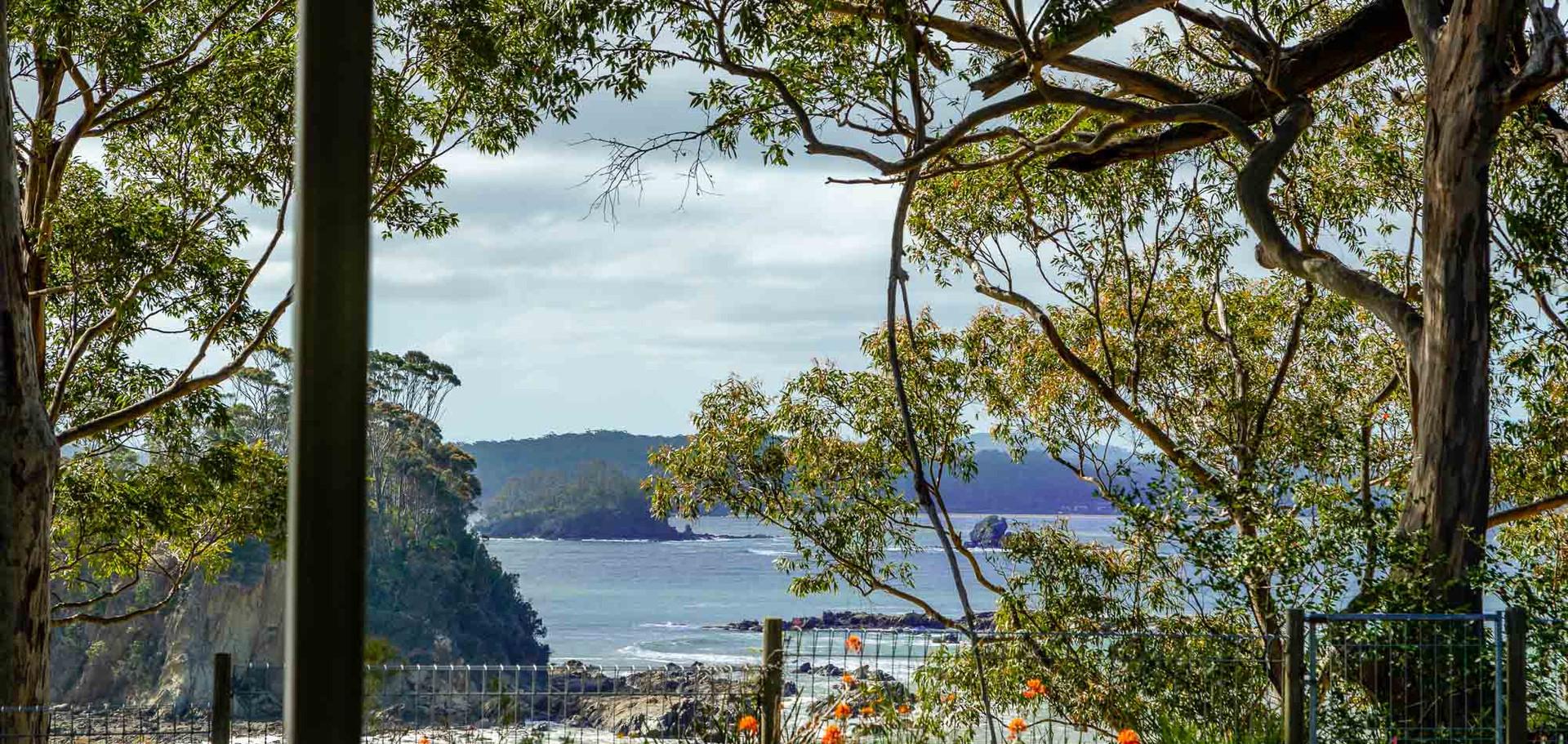 20 Beechwood Web View2.jpg