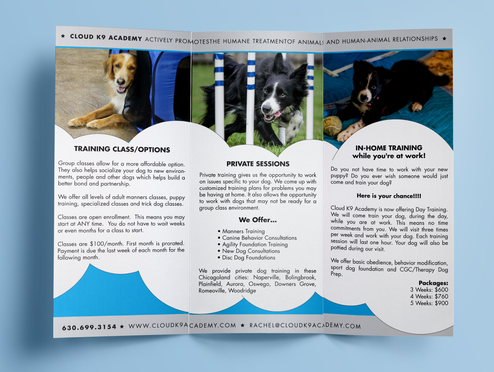 Cloud K9 Academy Tri-fold Brochure