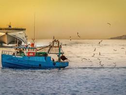 Consommer mieux par la pêche durable