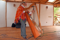 Andean Harp