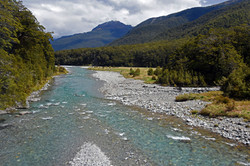 Along the Haast Pass Hwy