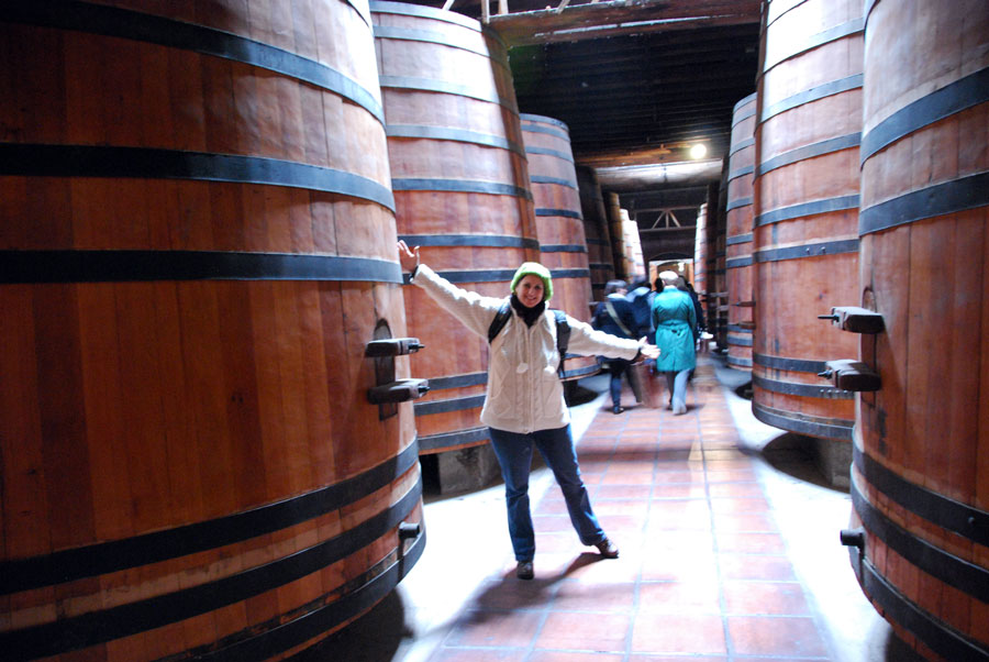 Cousino Macul Winery in Santiago