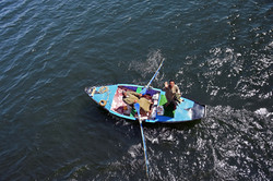 Lower Nile