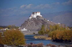 Monastery, Leh (Ladakh)
