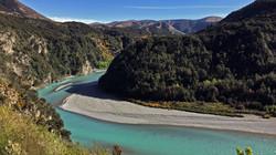 The Tranz Alpine Scenic Railway