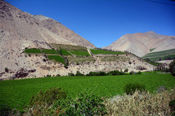 Elqui Valley, Chile