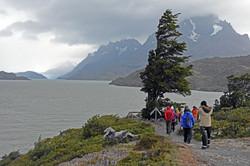 Lookout to Grey Glacier