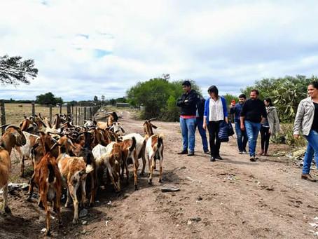 El Turismo Rural en Tiempos de Pandemia