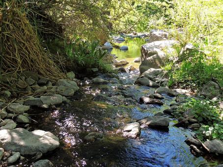 Vaquerías, una reserva natural en Valle Hermoso