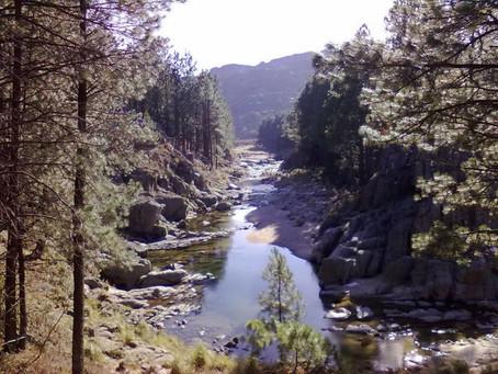 Oculto en el suroeste, Alpa Corral, paraíso de pinares y ríos