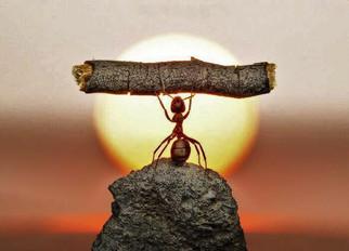 Nada é mais forte que a determinação