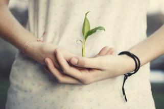 A esperança nasce todos os dias